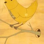 birdthree.jpg